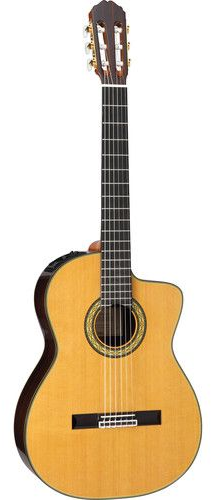 Takamine TH5C  Includes Official Hard Case